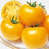 Ti –169 (МАМАТАРО ГОЛД) F1 - семена томата,Takii Seeds