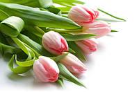8 марта - время вспомнить, что ты прекрасна!