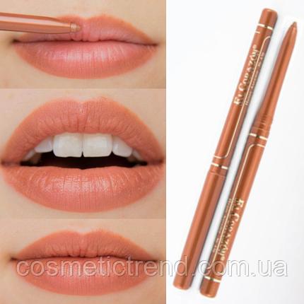 Карандаш для губ контурный механический Perfect Lips №436 Honey Autumn El Corazon, фото 2