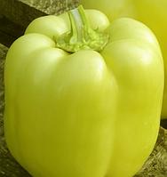 ВЕДРАНА F1 - cемена перца сладкого, 500 семян, Enza Zaden, фото 1