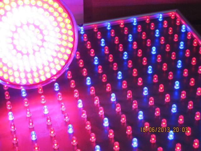 Светодиодная фито лампа для роста растений 10Вт/168LED.