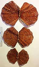Декоративні черепашки