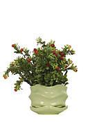 Горшок керамический для комнатных растений