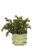 Керамические горшки для цветов, фото 2