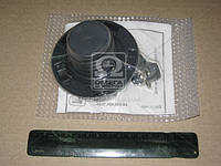 Крышка бака топлива ВАЗ 1111 с ключом (производитель ДААЗ) 00000-096000000
