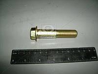Болт опоры заднего (производитель АвтоВАЗ) 11180-100148800