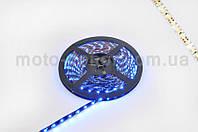 Лента светодиодная SMD 3528   (синяя, влагостойкая, 60 крист/1м, бухта 5м)
