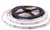 Лента Standart SMD 3528, 60 диодов, в силиконе (герметичная)