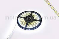 Лента светодиодная SMD 5050   (белая, влагостойкая, 30 крист/1м, бухта 5м)
