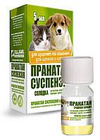 Пранатан суспензия для щенков и котят 5 мл
