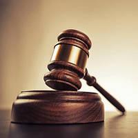Составление и подготовка процессуальных документов: исковых заявлений, аппеляционных и кассационных жалоб