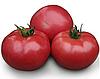 KS 38 F1 - насіння томату індетермінантного 1 000 насінин, Kitano Seeds