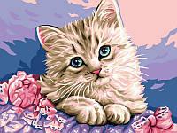 Картины по номерам 30×40 см. Милый котик, фото 1