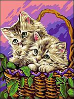 Картины по номерам 30×40 см. Котики в корзинке