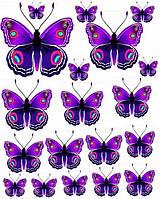 Бабочки фиолет  Вафельная картинка