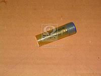 Распылитель ДТ 75М (в контейнере) (производитель ЯЗДА) 33.-80 (14-40S436)