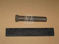 Болт ВОЛГА оси рычагов нижних (стандартный) (производитель г.Кр.Этна) 24-2904035