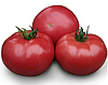 KS 38 F1 - семена томата индетерминантного, 1 000 семян, Kitano Seeds