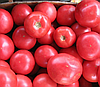 БАТЛЕР F1 - семена томата индетерминантного, 1 000 семян, Kitano Seeds