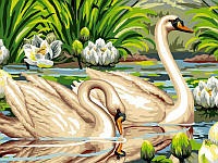 Картины по номерам 30×40 см. Лебеди и лотосы