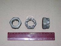 Гайка М24х1,5 кулака поворотного ГАЗ 53,3307 (производитель г.Кр.Этна) 292961-П8