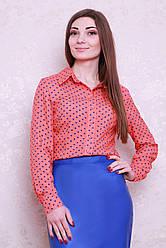 Универсальная блуза-рубашка в горошек