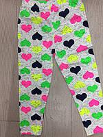 Лосины цветные для девочек. 92-128