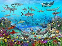 Фотообои для детской Подводный мир