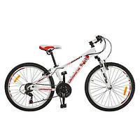 Детский спортивный велосипед Profi G20A315-L1-UKR-2 красно-белый 20 дюймов