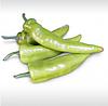 КАМПАЙ F1 - семена перца острого, Kitano Seeds