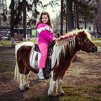 Пони для детей (шагом по лесу)