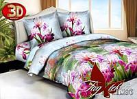 Евро-maxi комплект постельного белья TAG 3D PS-HL296