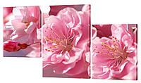 Модульная картина 241 Цветы