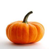 ВЕСТ - семена тыквы 0.5кг, Lark Seed