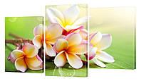 Модульная картина 187 Цветы