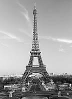 Фотообои Эйфелевая башня 183*254