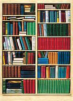 Фотообои Библиотека 183*254