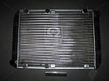 Радиатор вод. охлажд. (3110-1301010-20) ГАЗ 3110 , фото 2