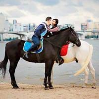Выезд лошадей в город