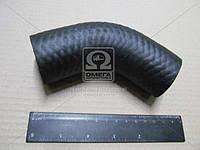 Патрубок радиатора ГАЗ 53 верхний (производитель ГАЗ) 53-1303010