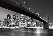 Фотообои на стену Горизонт Манхеттена Код: 119 / 140