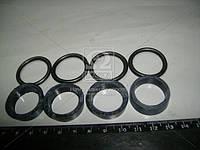 Ремкомплект уплотнения форсунки Д 65 (Украина). Ремкомплект-2113