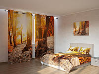 Фотокомплект Солнечный лес Код: ART 4198