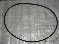Ремень 11х10х1600 ЗМЗ 65-069, СМД (производитель ЯРТ) 11х10х1600