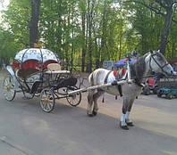 Прокат кареты «Золушка» с выездом по городу