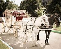 Карета на свадьбу «Екатерина»