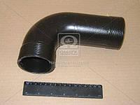Патрубок охладителя ГАЗ верхний (производитель ГАЗ) 33081-1172068-01