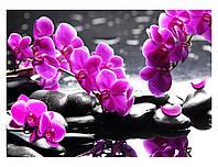 """Схема для вышивки бисером цветы, """"Орхидея над водой"""""""