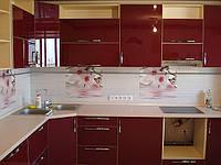 Кухня со стеклянными фасадами, фото 1