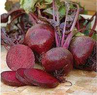 Монорубра семена свеклы столовой, фото 1